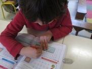 Stalioù skolidi (6)